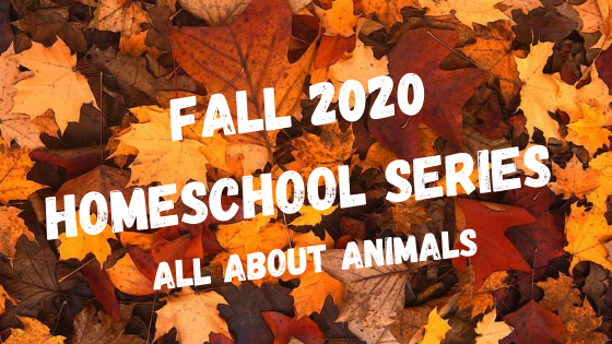 Click Here to Explore the Fall Homeschool Series at JCC