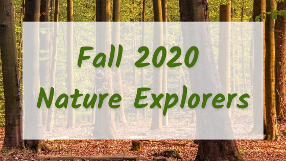 Click Here to Explore the Nature Explorers Series at JCC