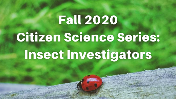 Click Here to Explore the Citizen Science Series
