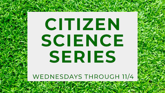 Citizen Science - Click here to learn more